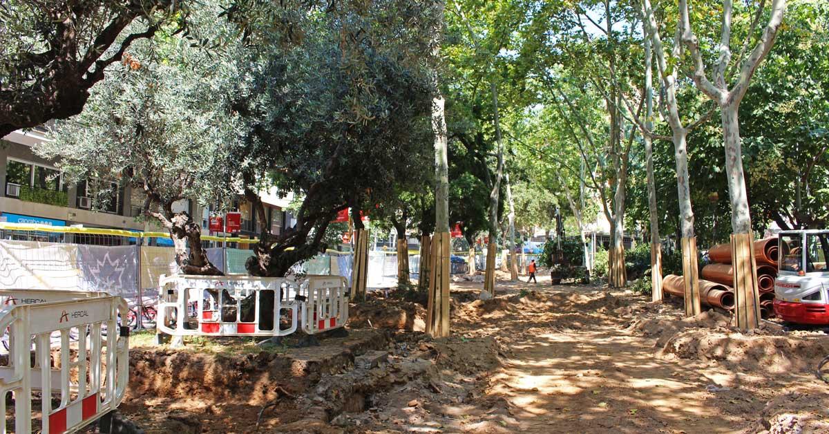 PROJECTE EXECUTIU de renovació dels Jardins de Montserrat i els seus entorns al Districte de l'Eixample
